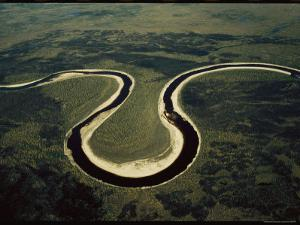 An Aerial View of a Waterway Snaking Through Wapusk National Park by Norbert Rosing