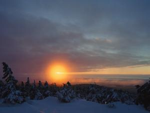 Winter Twilight View, Harz/Hochharz National Park, Germany by Norbert Rosing