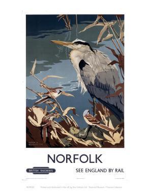Norfolk Heron