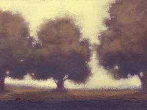 Calm Meadow II by Norman Wyatt Jr.