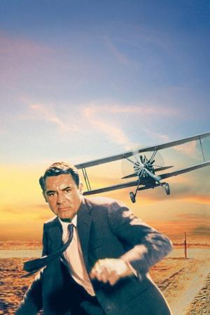 https://imgc.allpostersimages.com/img/posters/north-by-northwest-cary-grant-1959_u-L-Q1BUBVU0.jpg?artPerspective=n