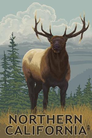 https://imgc.allpostersimages.com/img/posters/northern-california-elk-scene_u-L-Q1GQTJI0.jpg?p=0
