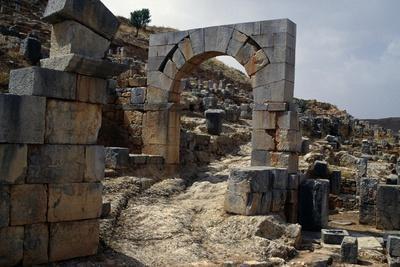 https://imgc.allpostersimages.com/img/posters/northern-city-gate-roman-city-of-tiddis_u-L-PPQX8R0.jpg?p=0