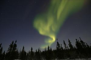 Northern Lights, Aurora Borealis in Night Sky