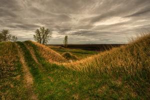 Prarie Grassland by Northern Pike