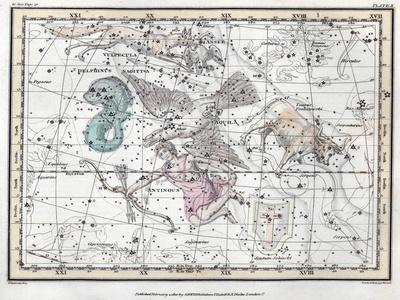 https://imgc.allpostersimages.com/img/posters/northern-sky-constellations-1822_u-L-PYYMG20.jpg?artPerspective=n