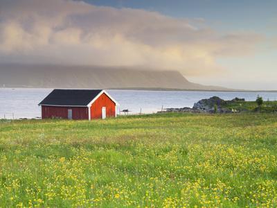 https://imgc.allpostersimages.com/img/posters/norway-northern-country-lofoten-gimsoya-meadow-hut_u-L-Q11YW7H0.jpg?artPerspective=n