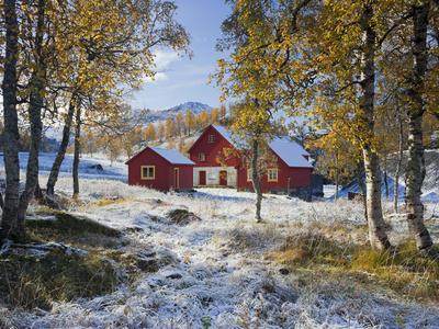https://imgc.allpostersimages.com/img/posters/norway-valldalen-farm-birches-late-autumn_u-L-Q11YW9A0.jpg?p=0