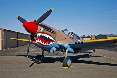 Nose Art on a Curtiss P-40E Warhawk