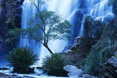 Australia Waterfall in Forest