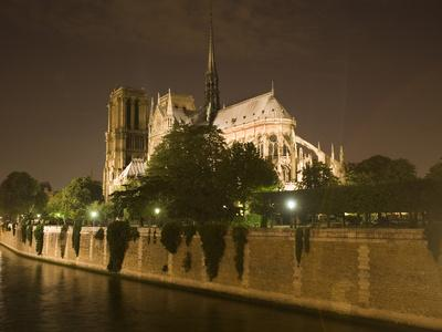 https://imgc.allpostersimages.com/img/posters/notre-dame-cathedral-at-night-paris-france_u-L-P248TZ0.jpg?p=0