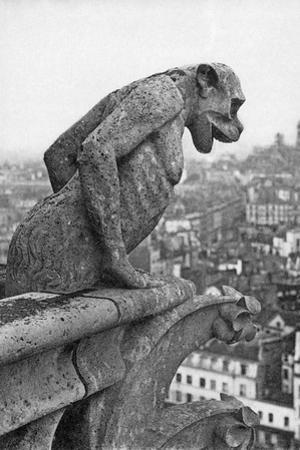 Notre Dame Cathedral Gargoyle Paris