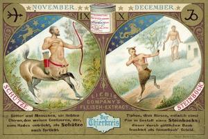 November and December: Sagittarius and Capricorn