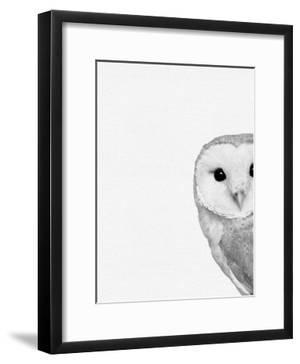 Barn Owl by NUADA