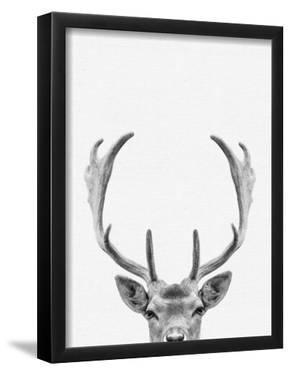 Deer by NUADA