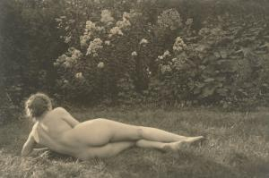 Nude Woman on Grass with Hedges