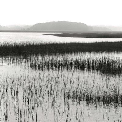 https://imgc.allpostersimages.com/img/posters/nut-island-salt-marsh_u-L-PGOORY0.jpg?artPerspective=n