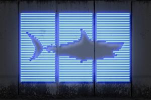 Shark by O.M.
