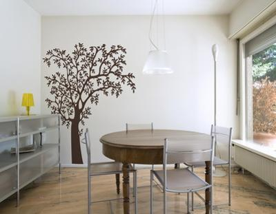 O?Nature Brown Wall Decal