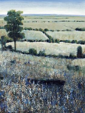Blueberry Hills by O'Toole O'Toole