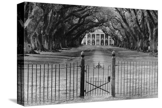 Oak Alley Plantation, Louisiana--Stretched Canvas Print