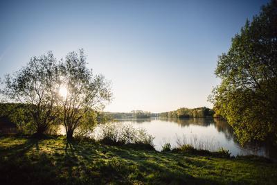 https://imgc.allpostersimages.com/img/posters/obersee-in-bielefeld-schildesche-after-the-sunrise_u-L-Q1EXLE60.jpg?artPerspective=n