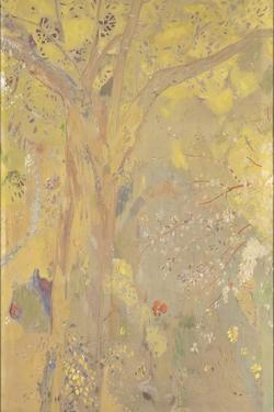 Décoration Domecy : arbres, fond jaune by Odilon Redon