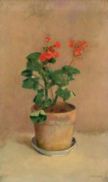 Geraniums in a Pot, c.1905 by Odilon Redon