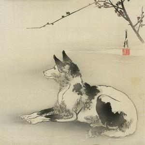 Black and White Dog, 1910 by Ogata Gekko