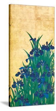 Irises, Japanese by Ogata Korin