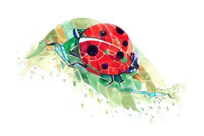 Ladybug by okalinichenko