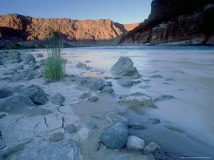 Colorado River, Glen Canyon, Arizona, USA by Olaf Broders