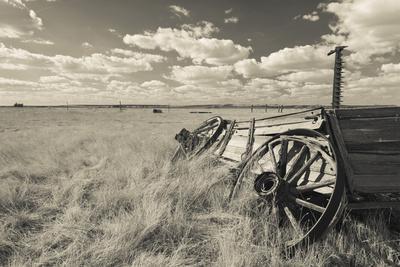 https://imgc.allpostersimages.com/img/posters/old-wagon-prairie-homestead-cactus-flat-south-dakota-usa_u-L-PN6SA10.jpg?p=0