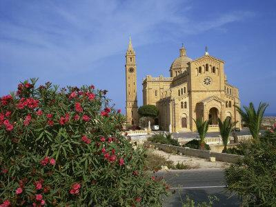 https://imgc.allpostersimages.com/img/posters/oleander-bush-in-front-of-the-ta-pinu-cathedral-at-gozo-malta-europe_u-L-P7XGRW0.jpg?p=0