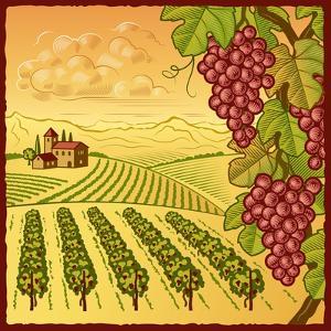 Vineyard Landscape by Oleg Iatsun