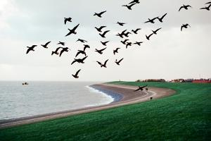 Seascape by Oleh Slobodeniuk