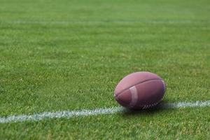 American Rugby Ball on the Grass by Olexandr