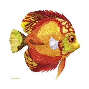 Fish 3 Red-Yellow by Olga And Alexey Drozdov
