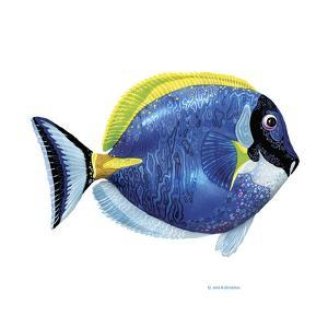 Fish 4 Blue-Yellow by Olga And Alexey Drozdov