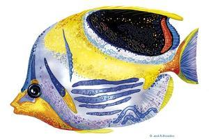 Fish 5 Blue-Yellow by Olga And Alexey Drozdov