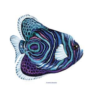 New Fish 3 by Olga And Alexey Drozdov
