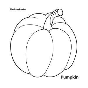 Pumpkin by Olga And Alexey Drozdov