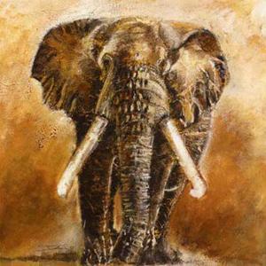 Elephant by Olga Ilic