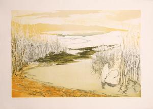 Low Waters West by Olga Poloukhine