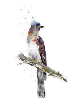 Lonely Bird by Olga Shefranov