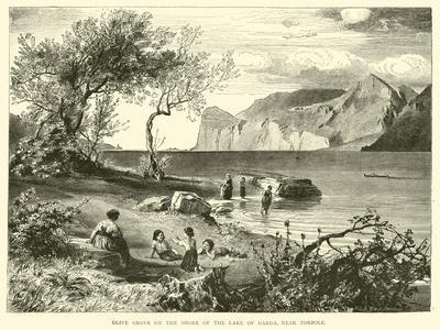 https://imgc.allpostersimages.com/img/posters/olive-grove-on-the-shore-of-the-lake-of-garda-near-torbole_u-L-PPVNQR0.jpg?p=0