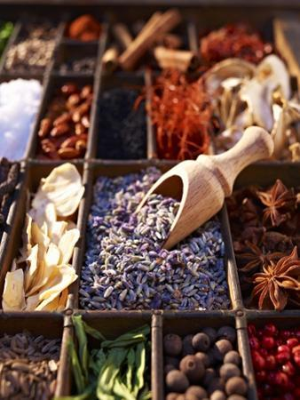Dried Lavender Flowers with Various Spices in a Seedling Tray by Oliver Brachat