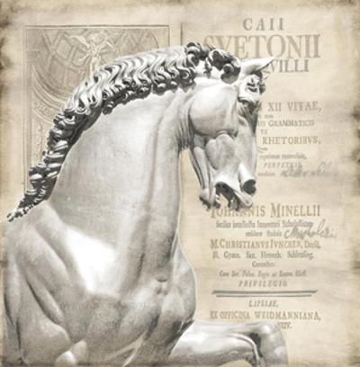 Renaissance IV