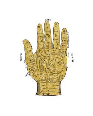 Vintage Palmistry by Oliver Jeffries