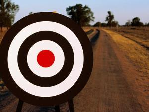 Archery Target on Country Road by Oliver Strewe
